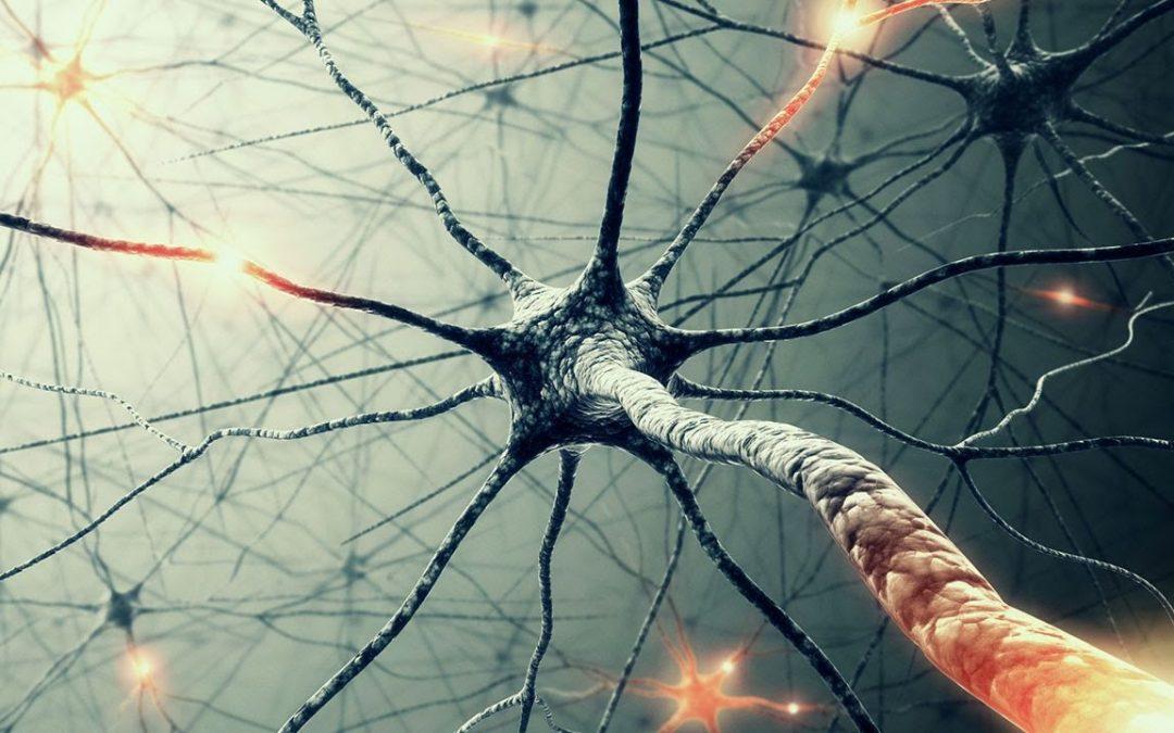 La lamentela spegne i neuroni